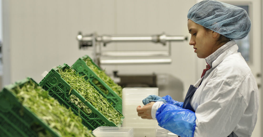 Nermina Lukac som Rasa, der arbejder på salatfabrikken